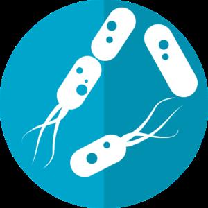 Prophylaxie et dépistage des maladies transmissibles